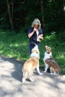Foto 3 Hundeschule