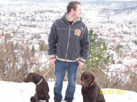 Foto 6 Hundesitting!!!