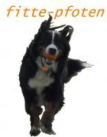 Hundesport fitte-pfoten