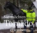 IHR GATTE WÜNSCHT SICH EIN DECO HORSE - MODELL ….
