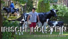 Foto 2 IRISCHE HOLSTEIN ---- DEKO KUH IST SCHON GANZ SCHÖN GROSS ...