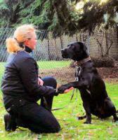 Ihr Hund hat probleme mit Artgenossen ?