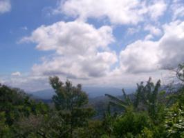 Foto 3 Immobilien im Naturparadies COSTA RICA