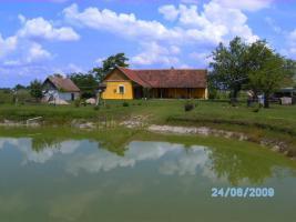 Foto 2 Immobilien in Ungarn
