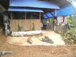 Foto 20 In Thailand neue Existenz???