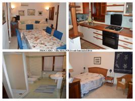 Foto 3 Insel ELBA-private Ferienhäuser