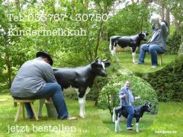 Foto 6 JA DIE NEUEN HOLSTEIN DEKO KUH MODELLE SIND HALT GANZ ANDERS ...