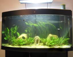 *JUWEL VISION 260* Aquarium mit VIEL ZUBEHÖR
