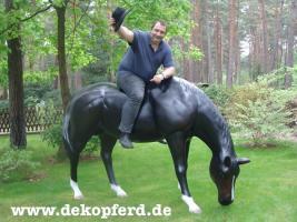Ja dann holen Sie sich jetzt das grasende Deko Pferd lebensgross in Ihren Garten ...