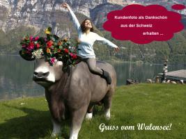 Foto 3 Jetzt bestellen Deko Kuh lebensgross - Edelweiss von der Alm - neue Schweizer Deko Kuh