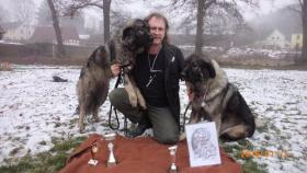 Foto 4 Jugoslawischer Hirtenhund (Sarplaninac) - Hündin 10 Monaten alt