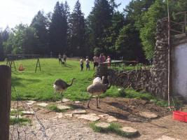 Junggesellenabschied in den Bergen feiern