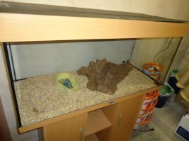 Foto 2 Juwel Aquarium