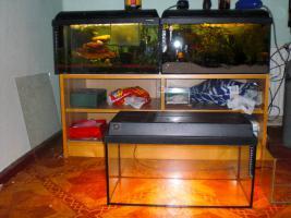 Foto 2 Juwel-Aquarium 54l