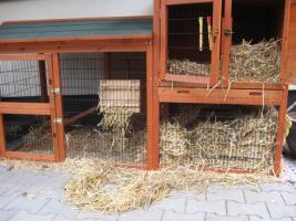 Foto 4 Kaninchenstall mit Heuraufe und Schutzhülle