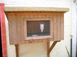 Kaninchenstall, Kleintierstall