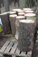 Foto 3 Kiefern-Hackklotz um selber sein Brennholz zu hacken