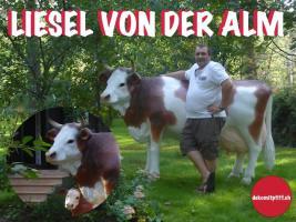 Kiel - Deko Kuh lebensgross / Liesel von der Alm oder Edelweiss von der Alm oder Deko Pferd lebensgross ...