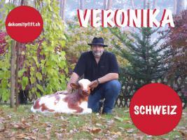 Foto 6 Kiel - Deko Kuh lebensgross / Liesel von der Alm oder Edelweiss von der Alm oder Deko Pferd lebensgross ...