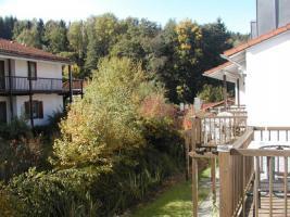 Foto 9 Kinder und Haustier freundlicher Ferienpark Falkenstein - Bayerischer Wald - Hunde und Katzen willkommen