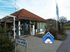 Foto 17 Kinder und Haustier freundlicher Ferienpark Falkenstein - Hunde und Katzen willkommen! Bayerischer Wald