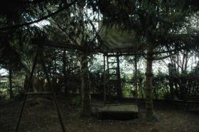 Foto 7 Kleingarten abzugeben
