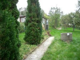 kleingarten zu verschenken in gro hartmannsdorf garten schrebergarten kleingarten. Black Bedroom Furniture Sets. Home Design Ideas