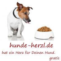 Foto 4 Kleintierbetreuung Hund-Katze-Hase-Ratten-Hamster-Vögel ec.