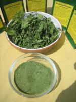 Foto 4 Knoblauchsrauke gemahlen; ganzjähriger lecker Knoblauchs-Geschmack; Naturkost vom Paradiesplatz