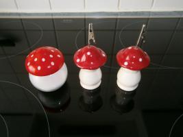 Foto 2 Kochbücher Pilze - Kochbücher neu ungebraucht beide zusammen 9 Euro