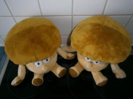 Foto 3 Kochbücher Pilze - Kochbücher neu ungebraucht beide zusammen 9 Euro