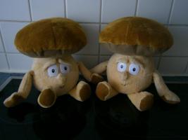 Foto 4 Kochbücher Pilze - Kochbücher neu ungebraucht beide zusammen 9 Euro