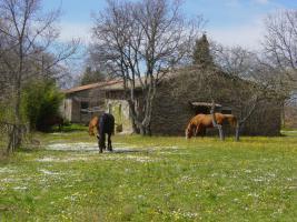 Foto 6 Kochkurs II - Kräuter der Toskana in der mediterranen Küche - Agriturismo Il Melograno