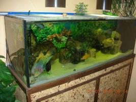 Komplett-Aquarium 375l
