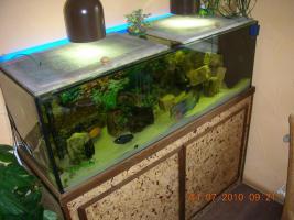 Foto 2 Komplett-Aquarium 375l