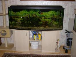 Komplett Aquarium 405l