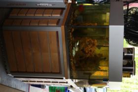 Foto 2 Komplett-Aquarium Spezialanfertigung Süss- und Salzwasser geeignet