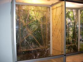 Foto 3 Komplett Terrarium mit Zubehör