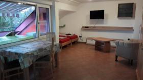 Konstanz Ferienwohnung 3-30323