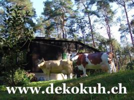 Kuh für Ihren Garten ... www.dekokuh.ch anklicken