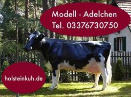 Foto 4 Kuh - Holstein - Friesian - Modell - Gartendeko