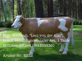 Kuh, #Melkkuh, ''Leni von der Alm'', braun weiss, Simmentaler Art, #1 Tank 20 Liter, 220cm / HAEIGEMO.DE  Artikel-Nr.: 2222