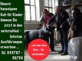 Foto 8 LIEGST AM STAND UND DEIN BLICK ERSPÄT DIESES EISAUFSTELLER ...