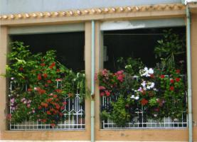 Foto 2 LOTZORAI: ERINNERUNG AN DIE BURG MEDUSA - Aparthotel Stella dell'est