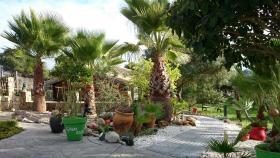 Foto 4 Last Minute Urlaub am Strand- ''Tarifa Great Escapes'' Ferienhäuser