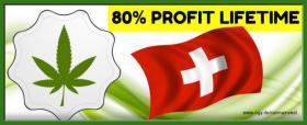 Legale CBD Cannabis Hanf Produkte Geld verdienen online