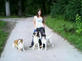 Liebevolle Tages/Urlaubsbetreuung für kleine/mittelgroße Hunde