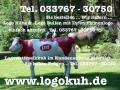 Liesel von der Alm ... Deko Kuh lebensgross ...