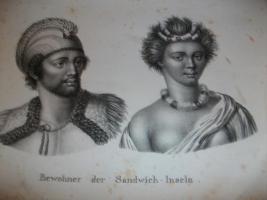 Foto 2 Lihtographierte Sammlung von Brodtmann C.J, Zuerich 1827