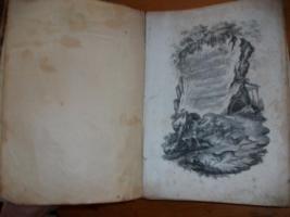 Foto 4 Lihtographierte Sammlung von Brodtmann C.J, Zuerich 1827